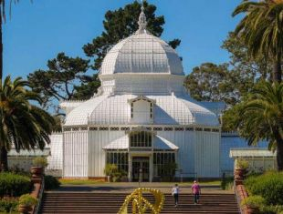 Interested in Golden Gate Park? Whether you visit the park regularly or you've never been, this guide highlights the best things to do in one of San Francisco's most interesting locations.