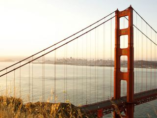 San Francisco Travel is reporting a total of 25.8 million visitors to the city in 2018, up 1.2 percent over 25.5 million in 2017.