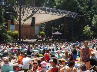 It's a singular San Francisco summer tradition: the Stern Grove concert series. Amazing artists, beautiful scenery, and best of all, it's free!