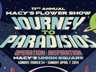 Journey to Paradisios at the Macy's Flower Show in San Francisco this Spring